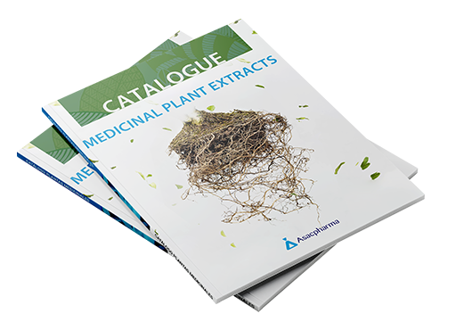 catalogo wng1